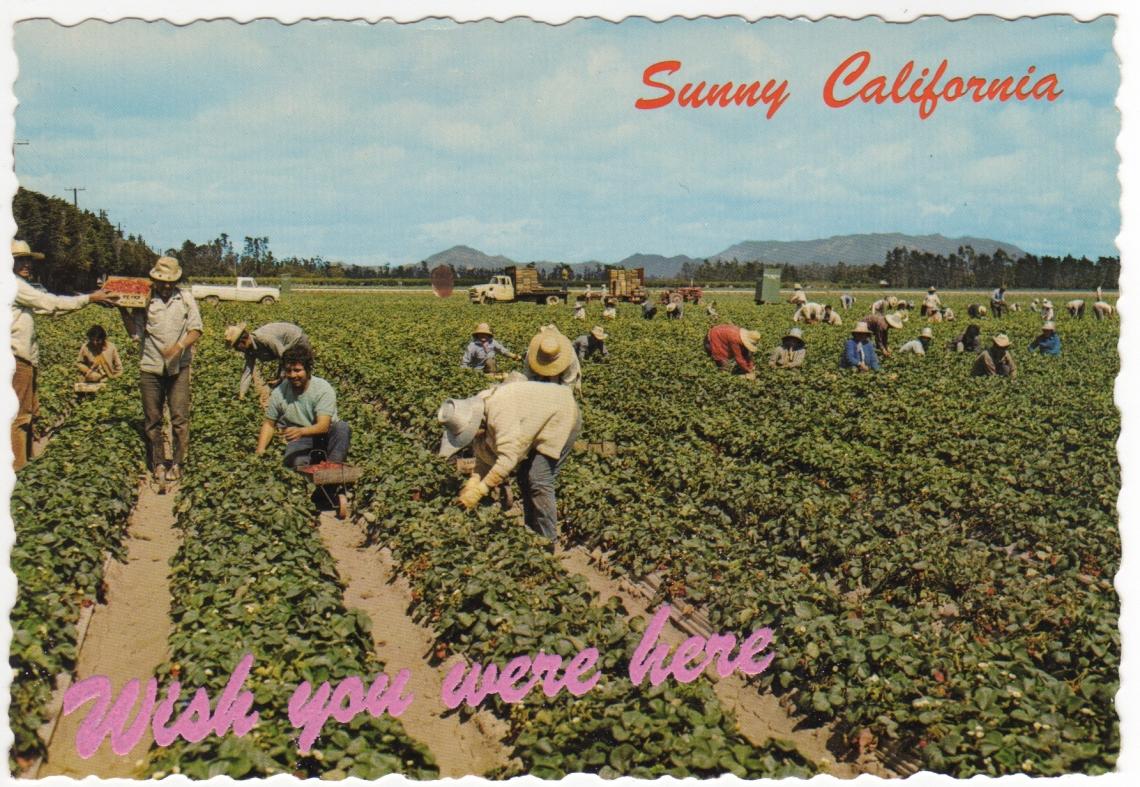 Postcard I.jpg